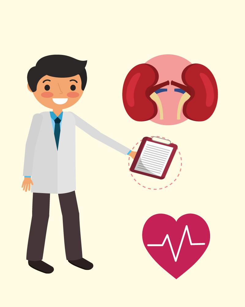 Imagen de la temática La donación de órganos